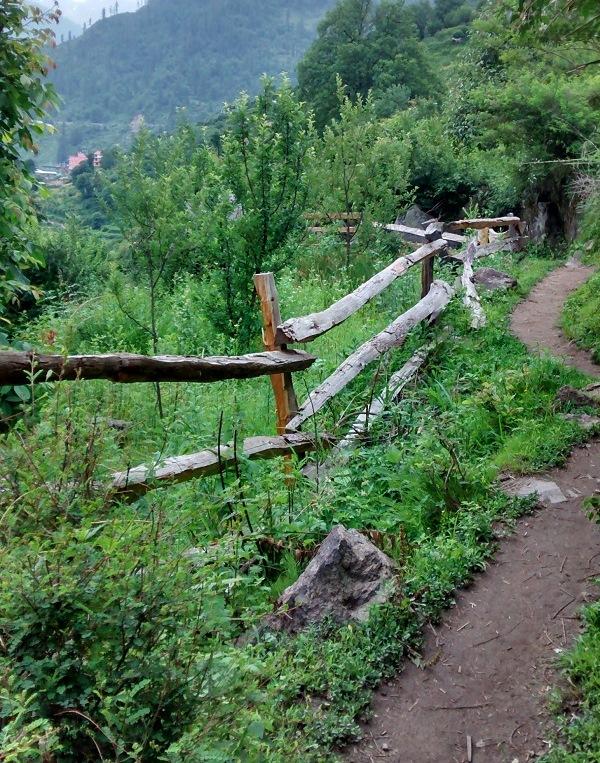 Kheerganga-trek-trail
