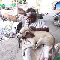 Pratima Devi – The Rag Picker Who Takes Care Of 300+ Stray Dogs