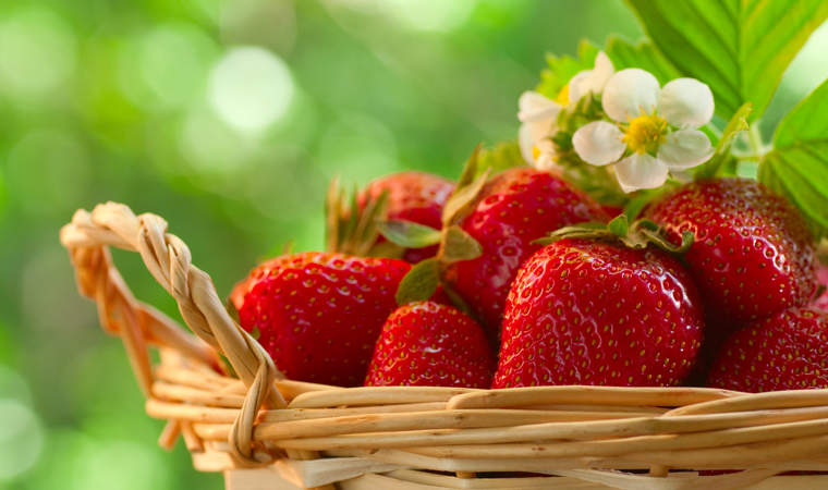 5 Health Benefits Of Strawberries That Will Let You Go With Your Temptations To Pop Them In