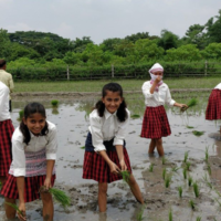 Assam's College Give Their Students A Taste Of Farmer's Life And Winning Hearts On Social Media