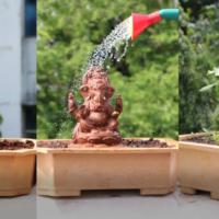 This Ganesh Chaturthi, Let Your Ganesha Transform Into A Tree