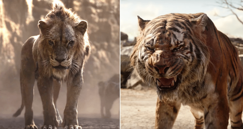 The Lion King Vs The Jungle Book Same Story But In 2
